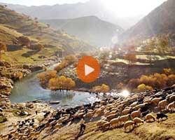 سفر به ایران از دیدگاهی متفاوت