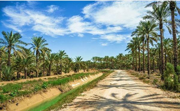 سفر دوروزه به بوشهر | پایانه ها