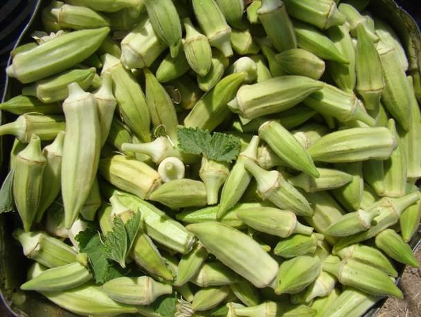 سوغات مهران